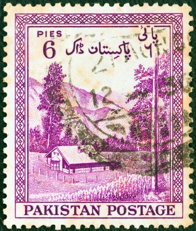 PAKISTAN - CIRCA 1954: A stamp printed in Pakistan from the
