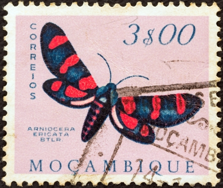stempeln: MOZAMBIQUE - CIRCA 1953: A stamp printed in Mozambique from the Butterflies and Moths issue shows an Arniocera ericata moth, circa 1953.