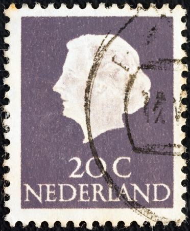 NETHERLANDS - CIRCA 1953: A stamp printed in the Netherlands shows Queen Juliana, circa 1953.  Stock Photo - 16377502