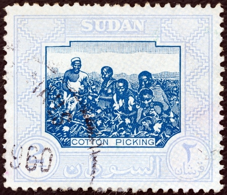SUDAN - CIRCA 1951: A stamp printed in Sudan shows Cotton Picking, circa 1951.  Stock Photo - 16377500