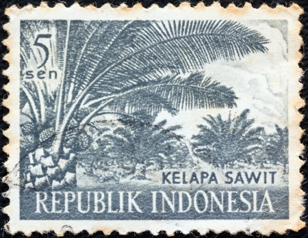 INDONESIA - CIRCA 1960: A stamp printed in Indonesia from the