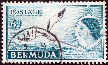 BERMUDA - CIRCA 1953: A stamp printed in Bermuda shows White-tailed tropic bird and queen Elizabeth II, circa 1953.