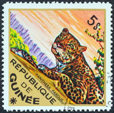 philatelic: GUINEA - CIRCA 1975: A stamp printed in Guinea from the Wild Animals issue shows a Leopard (Panthera pardus), circa 1975.