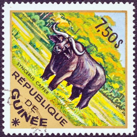postes: GUINEA - CIRCA 1975: A stamp printed in Guinea from the Wild Animals issue shows an African Buffalo (Syncerus caffer), circa 1975.