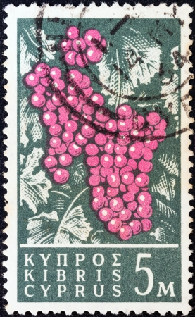 kypros: CYPRUS - CIRCA 1962: A stamp printed in Cyprus shows grapes, circa 1962.
