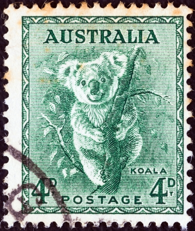 AUSTRALIA - CIRCA 1937: A stamp printed in Australia shows a koala, circa 1937.  Stock Photo - 17298600