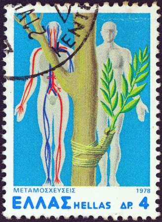 regenerative: GREECE - CIRCA 1978: A stamp printed in Greece from the Transplants issue shows a grafted plant and human circulation diagram, circa 1978.