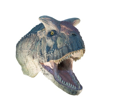Restoration of a Carnotaurus  Carnotaurus sastrei  dinosaur isolated