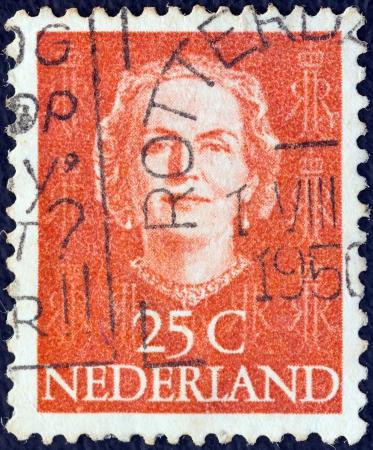 nederlan: NETHERLANDS - CIRCA 1949: A stamp printed in the Netherlands shows Queen Juliana, circa 1949.
