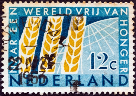 orange nassau: NETHERLANDS - CIRCA 1963: A stamp printed in the Netherlands from the Freedom from Hunger issue shows Ears of Wheat, circa 1963.