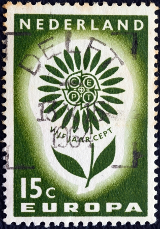 orange nassau: NETHERLANDS - CIRCA 1964: A stamp printed in the Netherlands from the Europa issue shows Europa Flower, circa 1964.