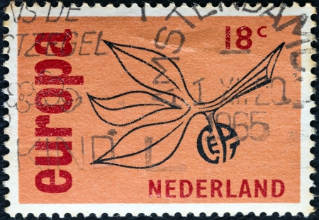 nederlan: NETHERLANDS - CIRCA 1965: A stamp printed in the Netherlands from the Europa issue shows Europa Sprig, circa 1965.  Editorial