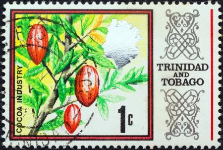 estampilla: TRINIDAD AND TOBAGO - CIRCA 1969: A stamp printed in Trinidad and Tobago shows Cocoa Beans, circa 1969.