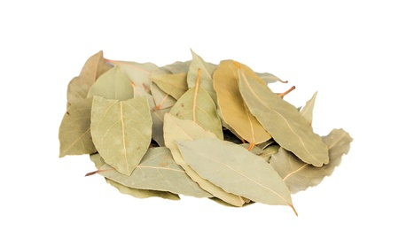 nobilis: Dry bay laurel leaves isolated