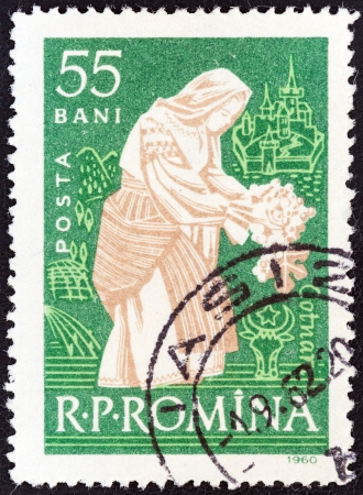 ROMANIA - CIRCA 1960: A stamp printed in Romania from the Romanian Vineyards issue shows woman tending vine (Cotnari), circa 1960.