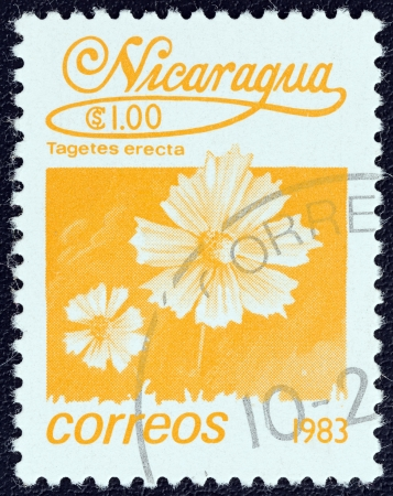 NICARAGUA - CIRCA 1983: A stamp printed in Nicaragua from the Flowers issue shows the Mexican marigold (Tagetes erecta), circa 1983.  Editorial