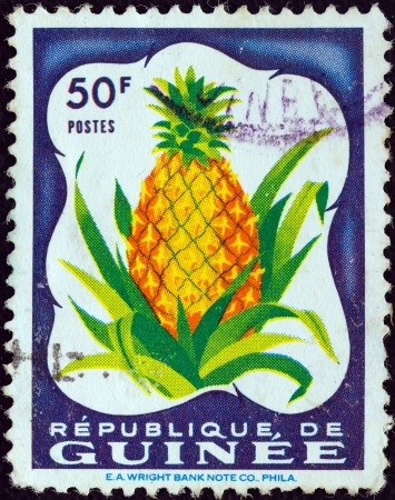 estampilla: GUINEA - CIRCA 1959  A stamp printed in Guinea from the  Fruits in natural colors  issue shows Pineapple  Ananas comosus , circa 1959   Editorial