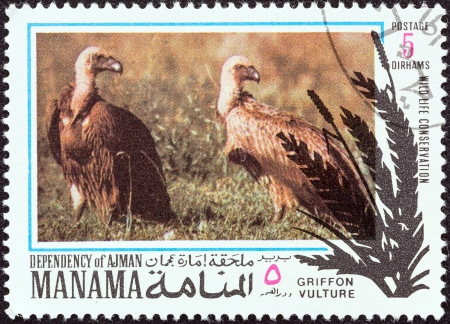 dependency: MANAMA DEPENDENCY - CIRCA 1971  A stamp printed in United Arab Emirates from the  Wildlife conservation  issue shows Griffon vultures  Gyps fulvus , circa 1971