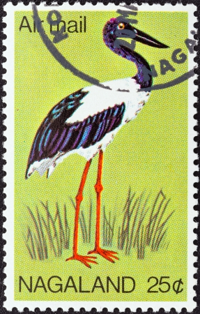 stempeln: NAGALAND STATE - CIRCA 1969  A stamp printed in India shows a Black-necked Stork  Ephippiorhynchus asiaticus , circa 1969