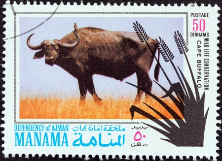 dependency: MANAMA DEPENDENCY - CIRCA 1971  A stamp printed in United Arab Emirates from the  Wildlife conservation  issue shows a Cape buffalo  Syncerus caffer , circa 1971