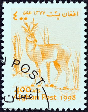 capreolus: AFGHANISTAN - CIRCA 1998  A stamp printed in Afghanistan from the  Wildlife  issue shows a Roe deer  Capreolus capreolus , circa 1998