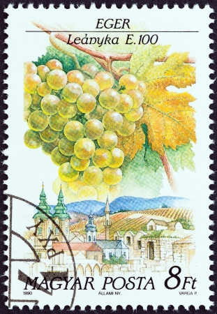 sello: HUNGARY - CIRCA 1990  A stamp printed in Hungary from the  Wine Grapes and Regions  1st series   issue shows Leanyka, Eger, circa 1990