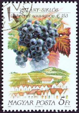 magyar posta: HUNGARY - CIRCA 1990  A stamp printed in Hungary from the  Wine Grapes and Regions  1st series   issue shows Cabernet Sauvignon, Villany, circa 1990   Editorial