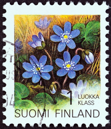 estampilla: FINLAND - CIRCA 1993  A stamp printed in Finland from the  Provincial Plants   issue shows Hepatica, circa 1993