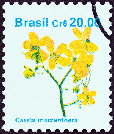 BRAZIL - CIRCA 1990  A stamp printed in Brazil from the  Flowers   issue shows Cassia macranthera, circa 1990