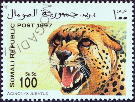 SOMALIA - CIRCA 1997  A stamp printed in Somalia shows a cheetah  Acinonyx jubatus , circa 1997
