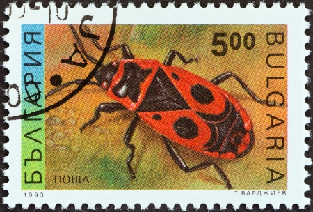 BULGARIA - CIRCA 1993  A stamp printed in Bulgaria from the  Insects  issue shows a Firebug  Pyrrhocoris apterus , circa 1993