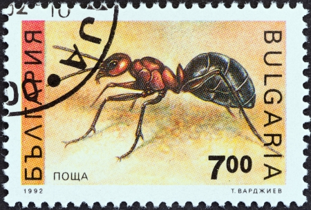 apocrita: BULGARIA - CIRCA 1992  A stamp printed in Bulgaria from the  Insects  issue shows an Ant, circa 1992