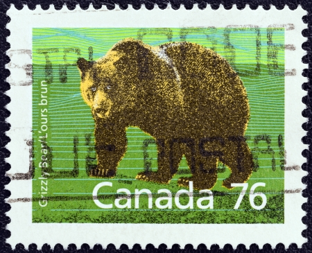 canada stamp: CANADA - CIRCA 1988  A stamp printed in Canada from the  Canadian Mammals  issue shows Grizzly bear  Ursus arctos horribilis , circa 1988   Editorial