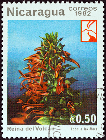 timbre: NICARAGUA - CIRCA 1982  A stamp printed in Nicaragua from the  Woodland Flowers   issue shows Mexican Cardinal Flower  Lobelia laxiflora , circa 1982