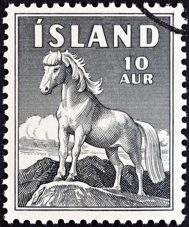 timbre: ICELAND - CIRCA 1958  A stamp printed in Iceland shows Icelandic Pony, circa 1958   Editorial