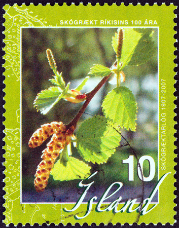 stempel: ICELAND - CIRCA 2007  A stamp printed in Iceland from the  100th anniversary of Reforestation   issue shows Common Hazel  Corylus avellana , circa 2007