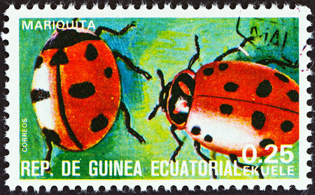 coccinellidae: EQUATORIAL GUINEA - CIRCA 1978  A stamp printed in Equatorial Guinea from the  Insects   issue shows Coccinellidae, circa 1978