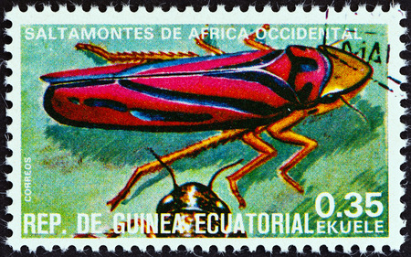 stempel: EQUATORIAL GUINEA - CIRCA 1978  A stamp printed in Equatorial Guinea from the  Insects   issue shows Graphocephara coccinea, circa 1978