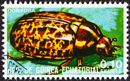 stempel: EQUATORIAL GUINEA - CIRCA 1978  A stamp printed in Equatorial Guinea from the  Insects   issue shows Dorifora, circa 1978   Editorial