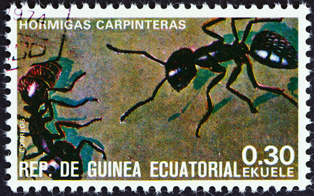 stempel: EQUATORIAL GUINEA - CIRCA 1978  A stamp printed in Equatorial Guinea from the  Insects   issue shows Formicidae, circa 1978
