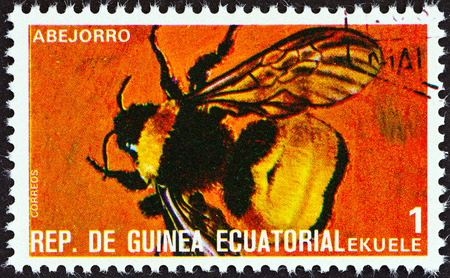 stempel: EQUATORIAL GUINEA - CIRCA 1978  A stamp printed in Equatorial Guinea from the  Insects   issue shows Bombus, circa 1978