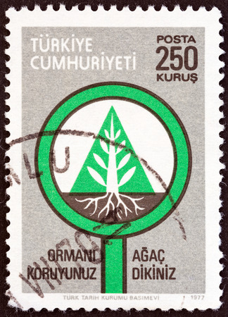 stempel: TURKEY - CIRCA 1977  A stamp printed in Turkey from the  Forest Conservation   issue shows tree and roots, circa 1977