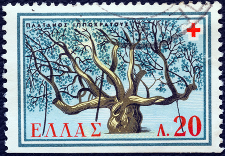 hippocrates: GREECE - CIRCA 1959  A stamp printed in Greece from the  Red Cross  issue shows Hippocrates Plane tree, Cos island, circa 1959