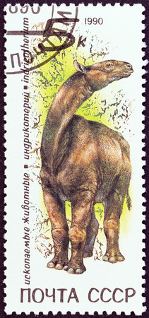 stempel: USSR - CIRCA 1990  A stamp printed in USSR from the  Prehistoric Animals   issue shows Indricotherium, circa 1990   Editorial
