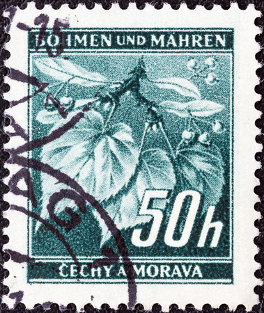 protectorate: PROTECTORATE OF BOHEMIA AND MORAVIA - CIRCA 1940  A stamp printed in Bohemia and Moravia shows Linden leaves and buds, circa 1940
