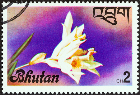 stempel: BHUTAN - CIRCA 1976  A stamp printed in Bhutan from the  Flowers   issue shows an Orchid, circa 1976