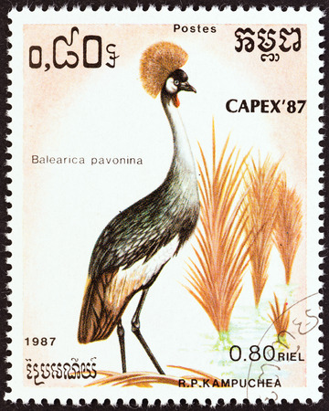 cambodge: KAMPUCHEA - CIRCA 1987  A stamp printed in Kampuchea from the  Capex 87 International Stamp Exhibition, Toronto  Birds   issue shows Black crowned crane  Balearica pavonina , circa 1987