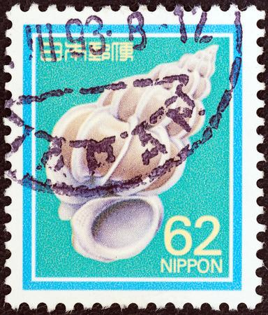 collectible: JAPAN - CIRCA 1989  A stamp printed in Japan shows Precious Wentletrap, circa 1989