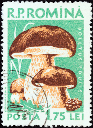stempeln: ROMANIA - CIRCA 1958  A stamp printed in Romania from the  Mushrooms  issue shows Cep  Boletus edulis , circa 1958
