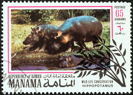 dependency: MANAMA DEPENDENCY - CIRCA 1971  A stamp printed in United Arab Emirates from the  Wildlife conservation  issue shows Hippopotamus, circa 1971